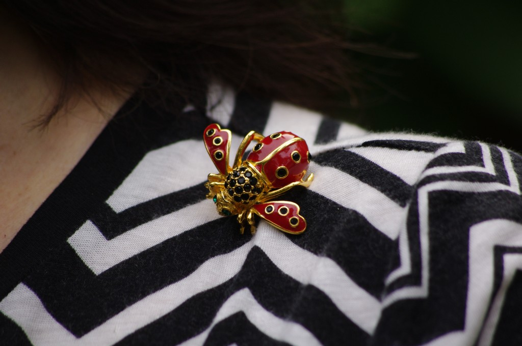 My lady bug bee pin, by Joan Rivers, paired with a tee by Missoni (for you, Joan)